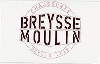 Partenaire chaussures breysse moulin yssingeaux : Accès au site web